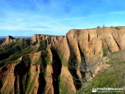 Carcavas Castrejón,Santa María de Melque; el paular cenicientos selva de oza